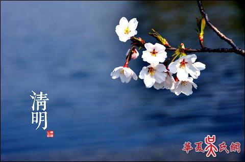 蝶恋花·清明